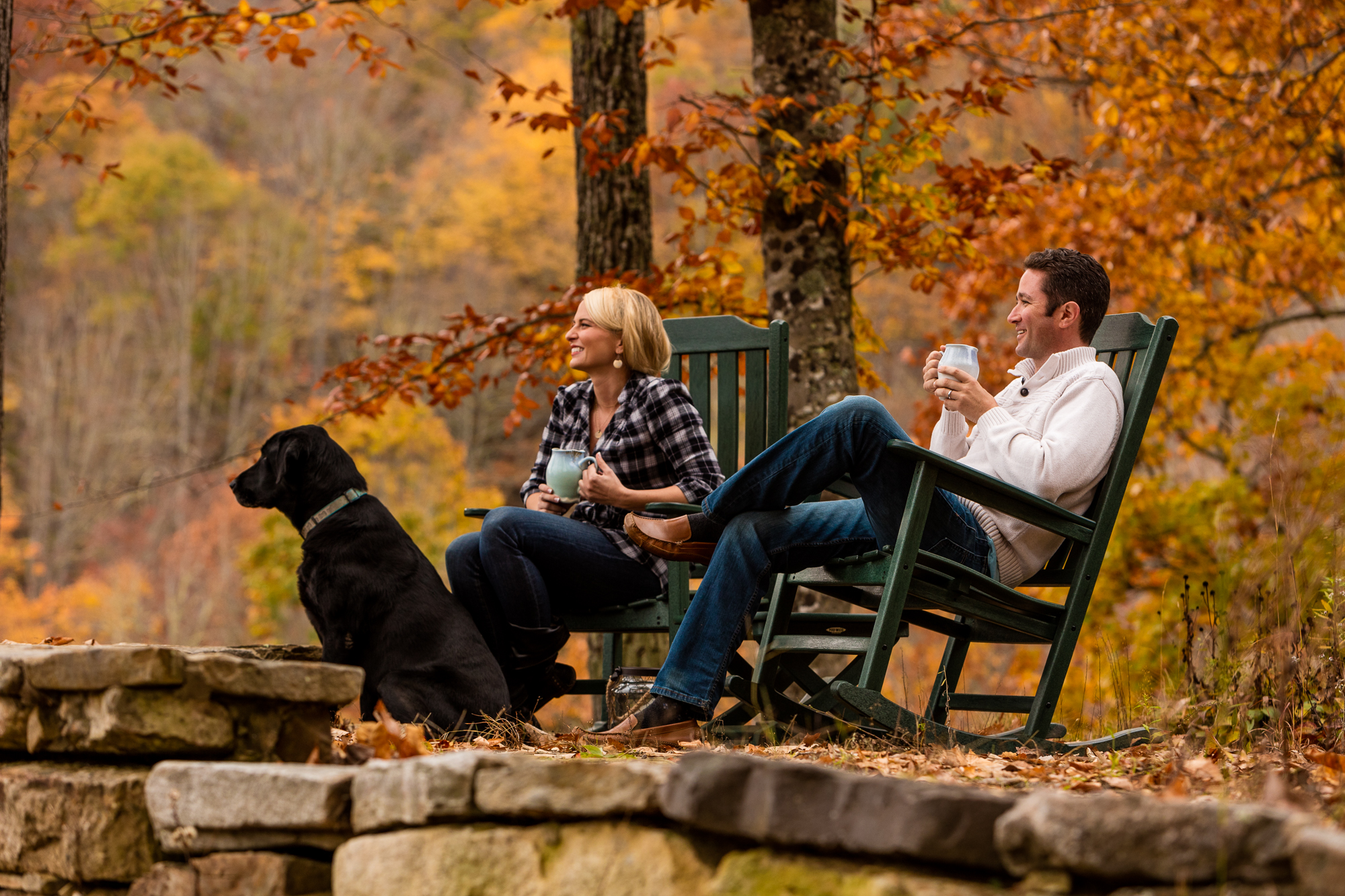 Asheville Mountain Cabins for Sale