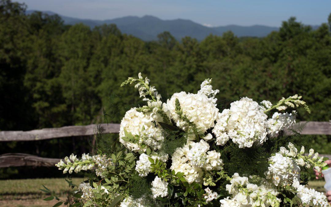 Summers at Green Mountain Farm