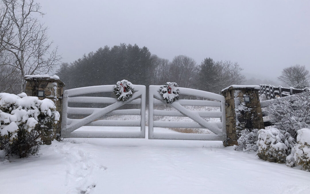 Holiday Recap from Green Mountain Farm – Reflection on 2020